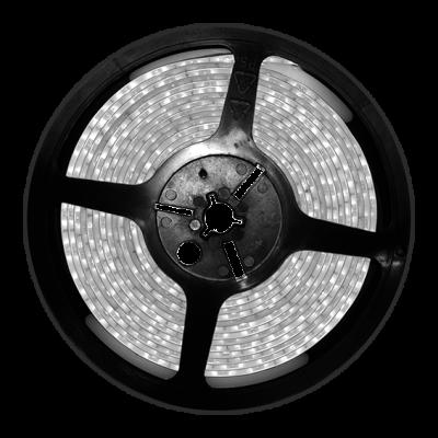 BLANCO 12V 16W TIRA DE LED